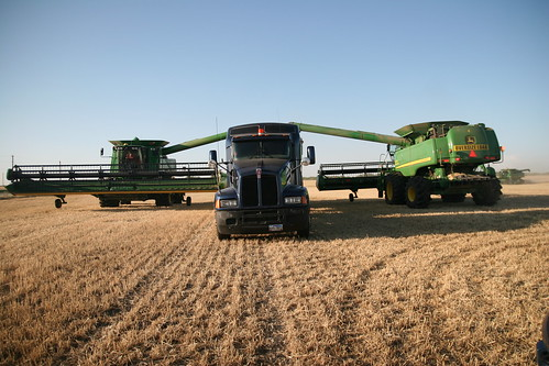 Two combines dump on the truck at once.