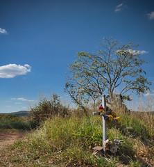 For him, the travel ended here... (Claudia Oseki) Tags: road brazil sky tree nature brasília brasil landscape bush cloudy paisagem estrada goiânia goiás cloudys