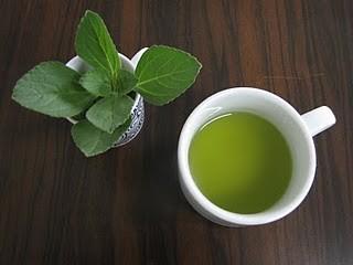 chá de boldo faz mal