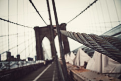 .cuttherope (.francesco) Tags: bridge family newyork art net brooklyn canon lens eos 350d italia ponte cables commercial getty ropes
