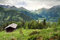 motschendaber alp (Youronas) Tags: mountains alps forest landscape austria tirol sterreich nationalpark weide cottage meadow valle hut alpini alpen landschaft wald alp virgen tyrol tal osttirol hohetauern summits tauern virgental easttyrol almwiese grosvenediger uppertauern virgenvalley