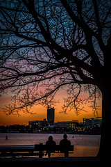 And the Sun will set for you (mimdal) Tags: sunset silhouette boston river charles