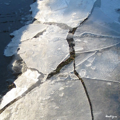 Spring Ice (monteregina) Tags: canada abstract cold macro ice geometric nature water lines closeup puddle design frozen spring eau frost mare natural geometry circles patterns details curves natur shapes structures textures qubec designs forms layers swirls mince transparent cracks thin icy kalt eis printemps froid patron lignes couches glace abstrakt motifs breakup abstractions flaque geometrie abstrait pftze courbes cercles dtails formes flaquedeau troudeau iceformation icebubbles monteregina springbreakup icedpuddle ladbcleduprintemps