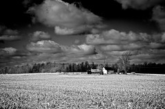 Exposed (lynn.h.armstrong) Tags: camera trees sky bw white house ontario canada black building tree art field lines car birds clouds barn forest lens geotagged photography boat photo spring interesting mac corn cornfield aperture nikon long flickr power zoom south shed wb lynn powerlines h nikkor armstrong antenna stormont vr afs gettyimages dx sault ingleside 2011 ifed 18200mm f3556 attributionnoderivs vrii d7000 ccbynd lynnharmstrong requesttolicence