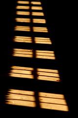 "Europe - Belgium / Antwerp - Merksplas (RURO photography) Tags: windows urban building art architecture buildings arquitectura puerta europa europe doors cityscape arte belgium belgique kunst details decoration belgië eu ventanas ornament porta dor belgica fenêtre lightandshadow 比利時 architettura architectuur arquitecture deur gebouw cityview flandres türen belgio architexture finestre puertas portes tore venster 2330 abandonedplace stal vlaanderen dreamjournal vecchie kolonie arquitecturaurbana merksplas vensters ベルギー bouwkunst بلجيكا deurtje مملكة бельгия dekolonie koestal koeienstal ""europeanunion"" βέλγιο yourcountry rudiroels spetser ประเทศเบลเยียม ubelgiji ""koninkrykvanbelgië"" verlatenplaatsen despetser"