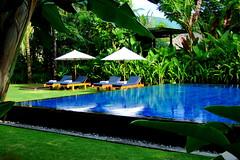 Dolce Far Niente (( _`) Sho) Tags:      bali conrad resort paradise pool club thesweetnessofdoingnothing