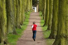 Groundhog boy (Mr:Mac) Tags: trees boy castle kid nikon d70 run wentworth avenue facingaway stainborough ladylucyswalk