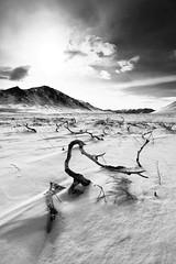 Keevy Basin (Wolfhorn) Tags: sun snow nature alaska clouds landscape blackwhite wilderness keevybasin