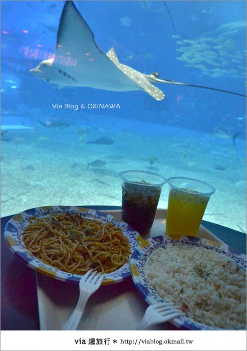 【沖繩景點】美麗海水族館~帶你欣賞美麗又浪漫的海底世界!38