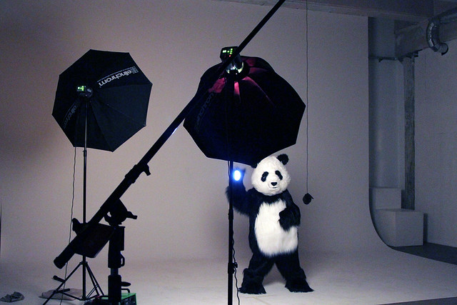 WWF Earth Hour Behind the scenes