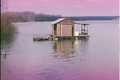 (....) Tags: house 35mm river purple explore analogue float 44 helios sava expiredfilm usce zenite