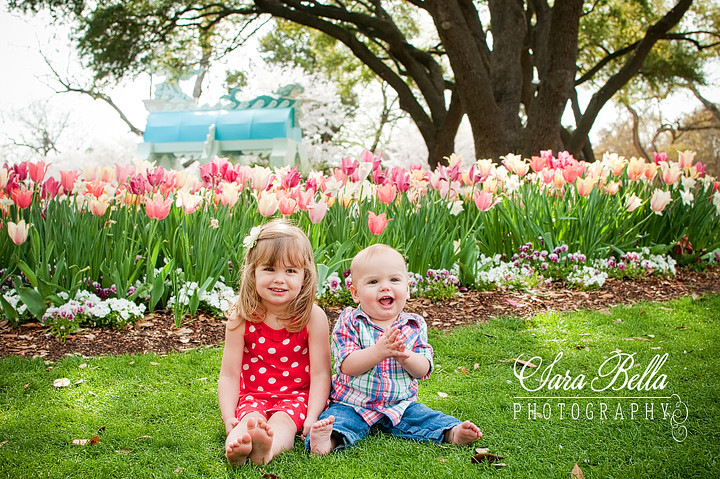 3-19-2011 Line Tulips (4) copyweb