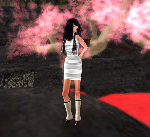 Cherry blossoms and perse