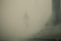 grim reaper. (n+s) Tags: toronto ontario canada man fog haze highpark sinister smoke burn mysterious oneperson grimreaper controlledburn silenthill whichone oneman singleperson solitaryfigure