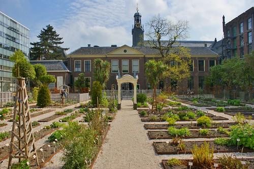 Botanische Tuin Leiden : Flickriver photoset hortus botanicus leiden april by