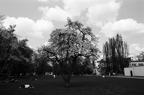 Praha spring