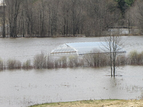 farm flooding, Wadhams, NY