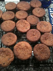 Before they are devoured -