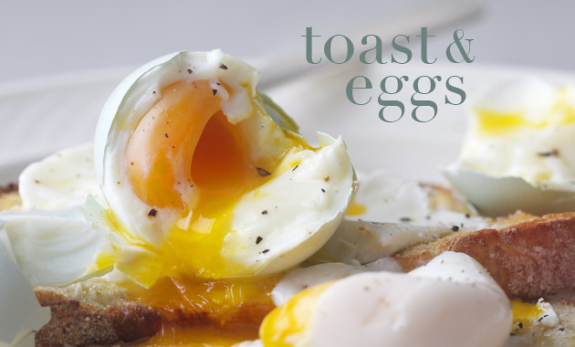 toast-and-eggs-tx