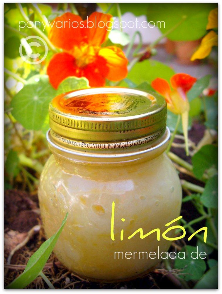Mermelada de limones enteros con fructosa (8)
