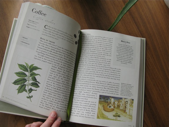 plant book record chocolate 004