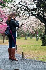 _ROW0417 (Alex Rowan) Tags: people plants flower alex japan kyoto asia downtown  cherryblossom rowan plumblossom  nijojo nijocastle  centralkyoto  alexrowanphotography