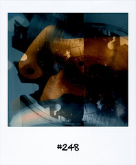 "#Dailypolaroid #248 #fb • <a style=""font-size:0.8em;"" href=""http://www.flickr.com/photos/47939785@N05/5772127160/"" target=""_blank"">View on Flickr</a>"