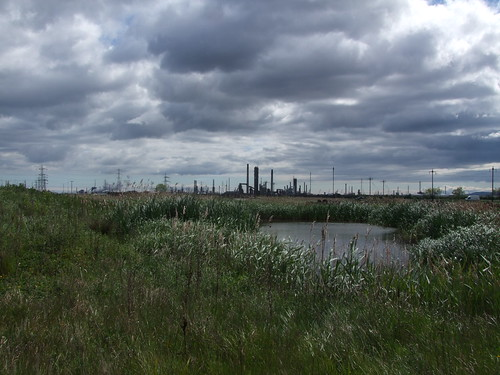 Teeside Nature Reserve