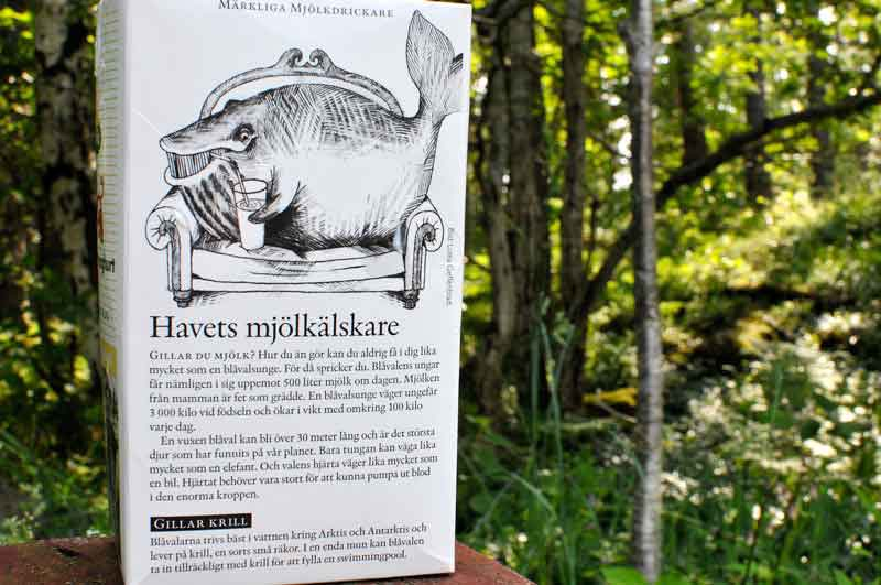 Klaus Jost, Cetology in Swedish Forests full, Juni 2011