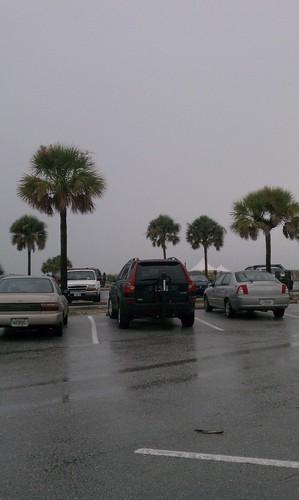 Morton plant tri rain
