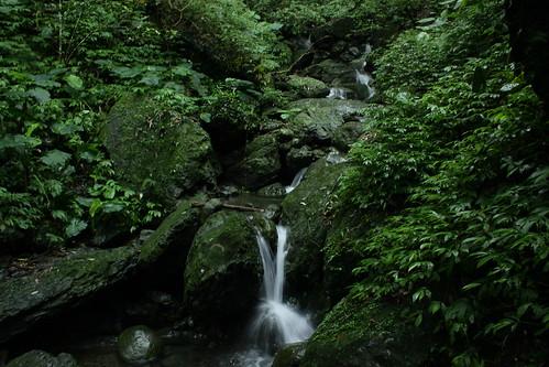 新北市三峽雲森瀑布_14_2011.06.28