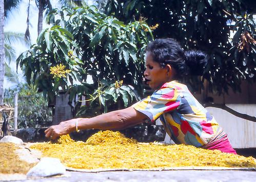 Kampung Pasunga