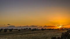 Sunset in Alentejo