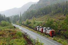 WFP 302 ~ Nimpkish Valley (Chris City) Tags: train railway railroad shortline logging rainforest wfp nimpkishvalley vancouverisland