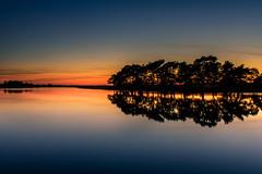 Tranquil Evening (Explore 5-10-2016) (Sunset Snapper) Tags: tranquilevening sunset hatchetpond beaulieu newforest hampshire uk still calm peaceful tranquil reflections trees pond water filter lee nd grad nikon d810 2470mm mirrorfinish august 2016 sunsetsnapper