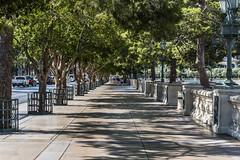 White Tube Socks (merobson) Tags: strip lasvegas pedestrians trees