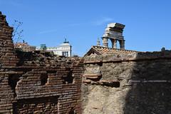 Muro imperiale (Luca Di Ciaccio) Tags: roma foriepalatino foriimperiali