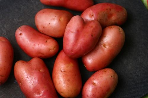 Kartoffel-Käse-Quiche