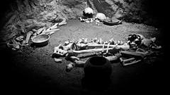 Bones (Taylor Selden) Tags: blackandwhite bw spain ronda bones andalucia espana
