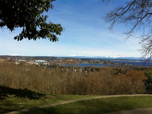 Sunny Day at Louisa Boren Park