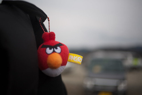 Angry Birds at Ishinomaki