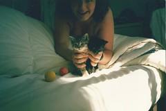 SCAN0008 (10:17) Tags: cats black smile sunshine cat kitten teddy tabby kittens meow