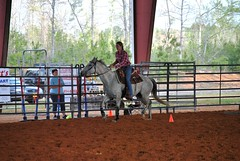 Clinton Arena Horse Show 2/30 (Marsh, D.) Tags: show horse woman phoenix lady nikon louisiana barrels clinton gray arena trail riding western poles rider equine equus quarterhorse placed participating greymare d3000 deesnke marshd