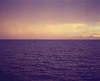 Horizon Series No.5 (RagtimeWillie) Tags: ocean pink sunlight seascape colour mamiya film beach clouds vintage mediumformat waves ship purple dusk horizon retro nostalgia rz67 williamswishwellingtons