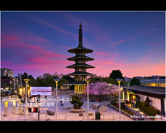Japantown San Francisco Cherry Blossom Sakura 樱花盛開 (davidyuweb) Tags: sanfrancisco california pink blue sunset red sky usa 6 color cherry pagoda san francisco peace candy blossom 9 cotton filter lee cottoncandy sakura japantown sfist gnd japantownpeacepagoda 樱花盛開 舊金山日本城樱花盛開 cottoncandycolorskybluepink sanfranciscojapantownpeacepagoda