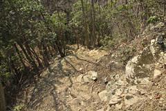 生藤山の下り