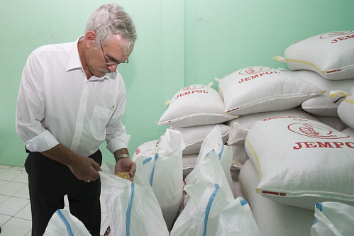 Acting Under Secretary for Farm and Foreign Agricultural Services Michael Scuse takes a handful of U.S. soybeans used at a 'tempeh/tofu village' production site in East Jakarta on April 6.  Scuse visited the village – which uses 100 percent U.S. soybeans to produce tempeh and tofu, which are soy-based stables of the Indonesian diet – during an Agribusiness Trade and Investment Mission to Indonesia that he led last week. Photographer, Danumurthi Mahendra, U.S. Embassy, Jakarta