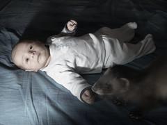 Paranormal activity (Giorgio Fonda) Tags: ferret leonardo e3 demostene