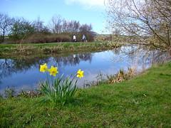 I love Spring (Jaxpix50) Tags: love spring tag2 tag1 april jaxpix50 jackiehsouth