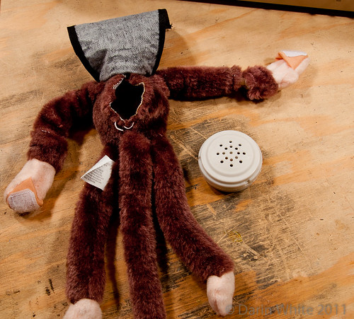 Project Loud Monkey 050